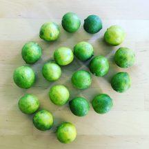 key lime 3